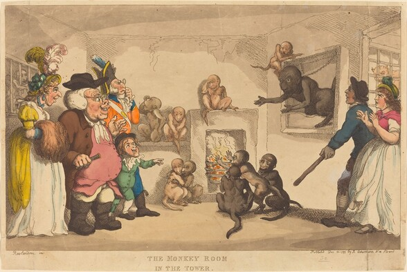 The Monkey Room in the Tower