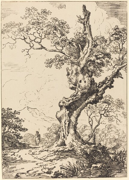 Study of an Old Oak Tree, Water on Right, a Man on Left