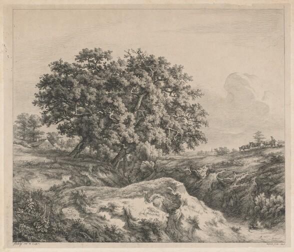 Le chêne au ravin (Oak Tree by a Ravine)
