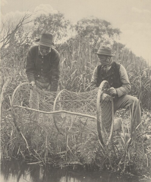 Setting Up the Bow-Net