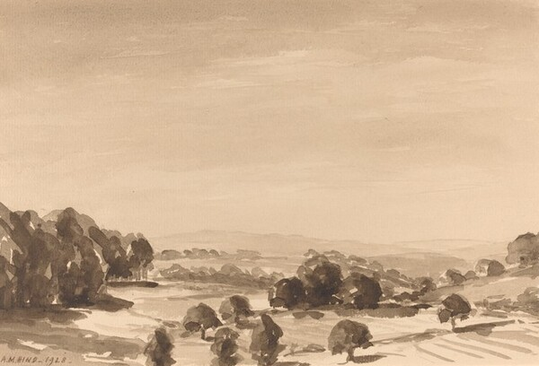 Landscape near Meersburg