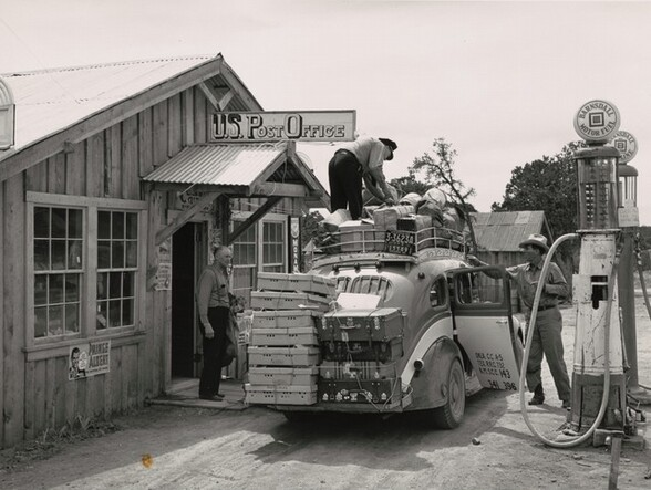The stage which daily brings in mail, freight, express and passengers to Pie Town, New Mexico