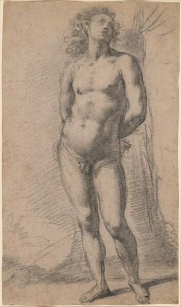 Study of a Standing Male Nude: Saint Sebastian
