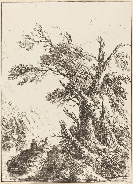 Landscape with Old Trees by Water