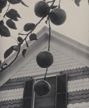 image: Gable and Apples