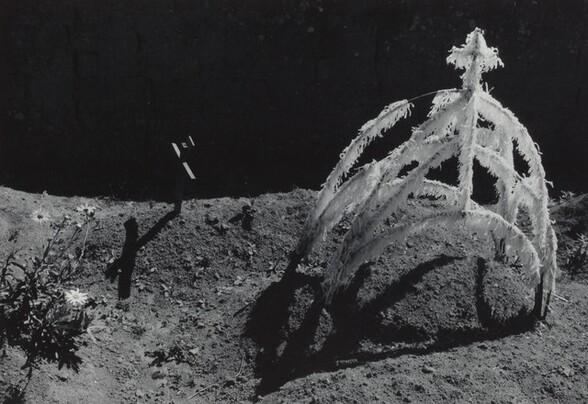 Tumba reciente (Recent grave)