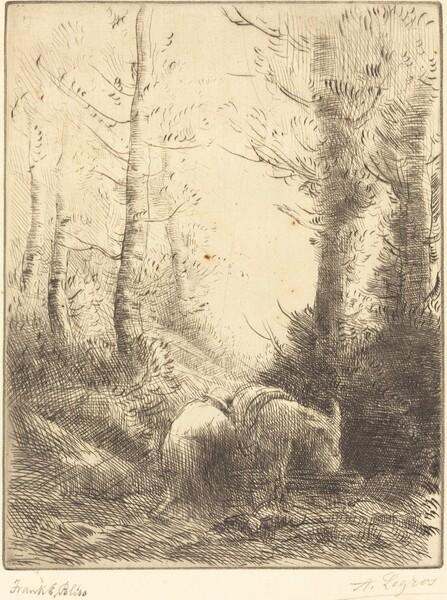 Farmer and His Donkey (Le fermier et son ane)
