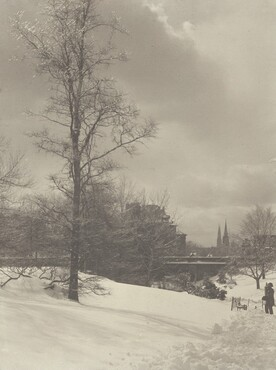 image: Winter, Central Park