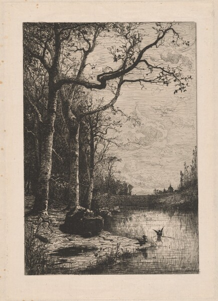 The Marshes of Burbanche (Marais de la Burbanche)