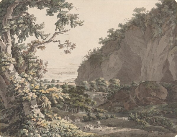 A Wooded Valley with Rocky Cliffs