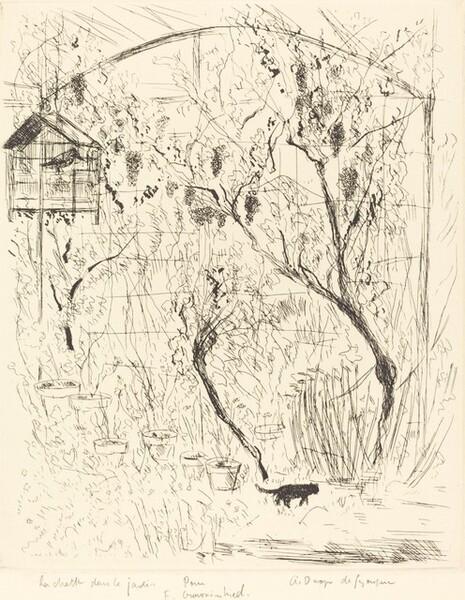 La chatte dans le jardin