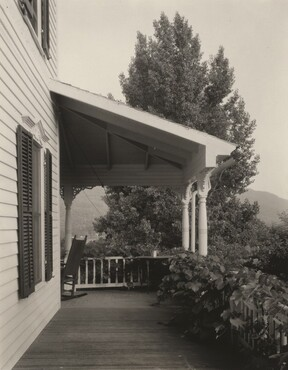 image: House, Leaves and Tree