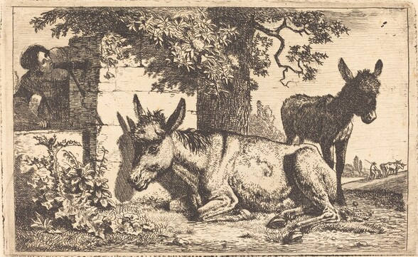 A Donkey by a Water Well