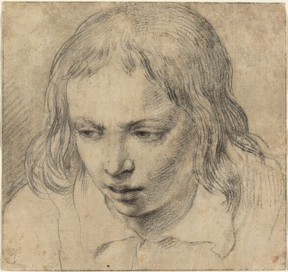 Head of a Young Man [recto]