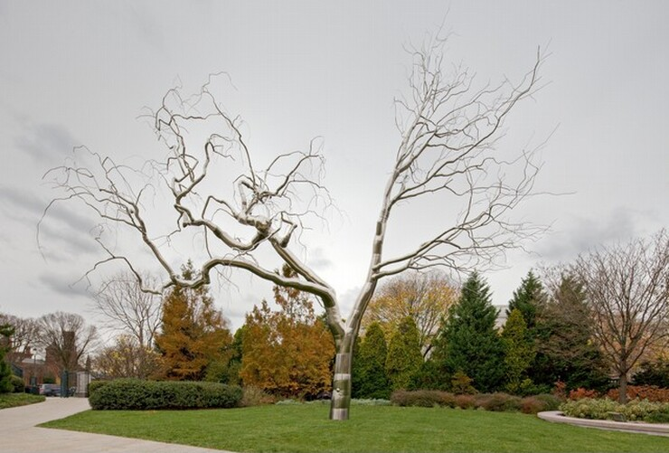 <p>Roxy Paine, Graft, 2008-2009