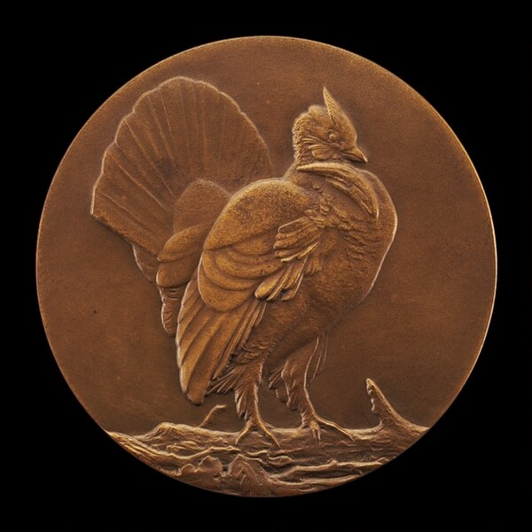 Ruffed Grouse [reverse]
