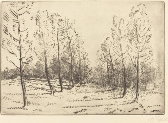 Avenue of Poplars (L