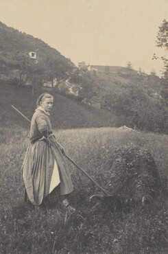 image: The Harvest, Mittenwald