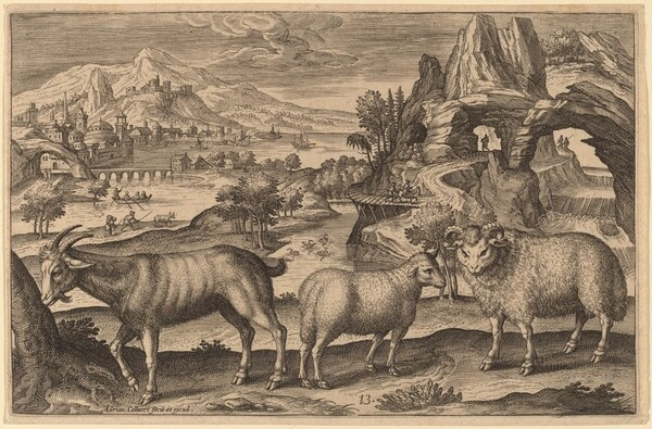 A Goat, a Ewe, and a Ram