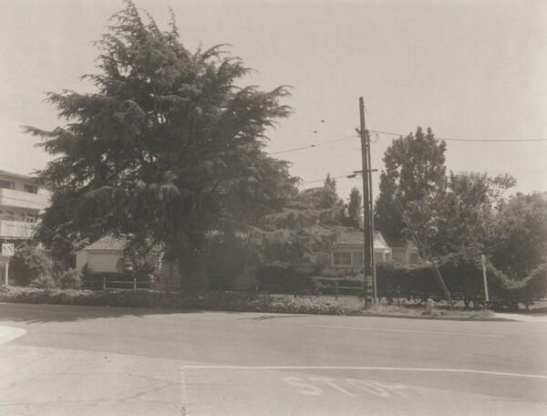 7th Street/Near San Vicente, Santa Monica