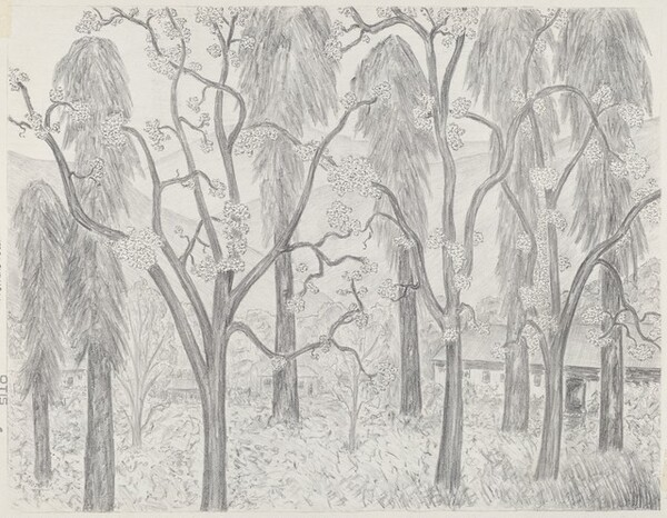 Untitled (Village Amidst Flowering and Other Trees, Mountains in Background)