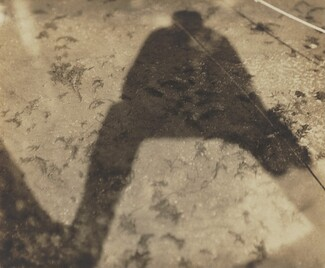 image: Shadow in Lake