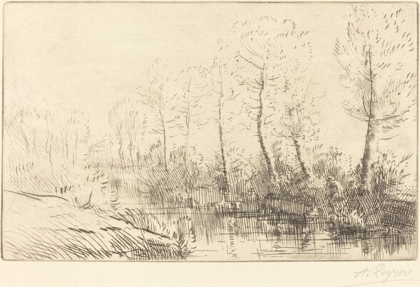Birch Trees: Water