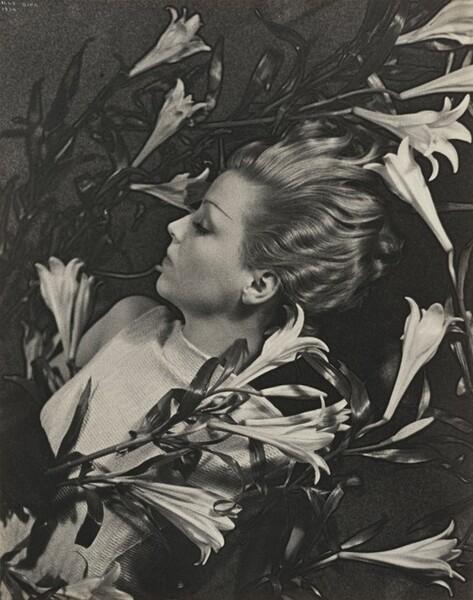 Study for Salut de Schiaparelli (Lily Perfume), Paris
