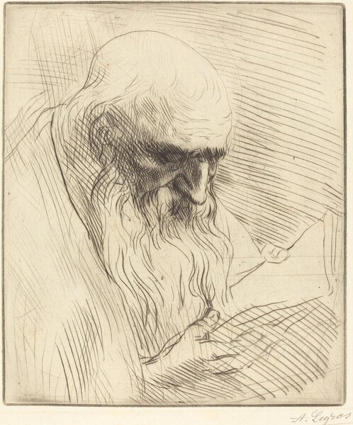 Study of the Head of a Man Reading (Etude de tete d