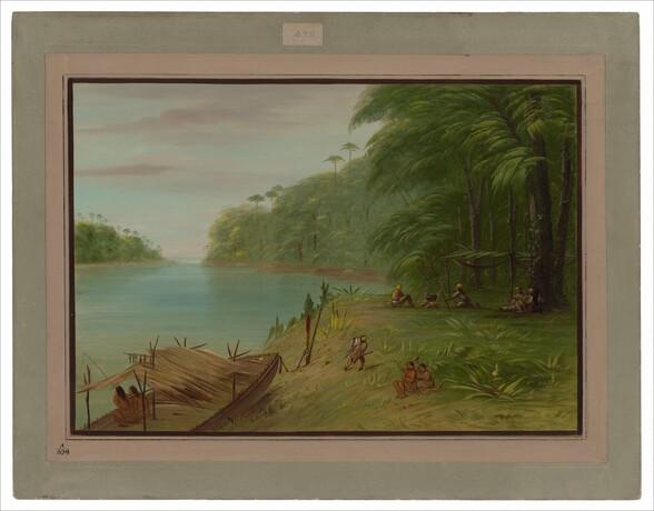 Shore of the Essequibo
