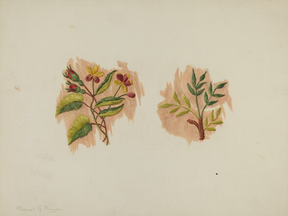 Silk Petticoat (Fragment)