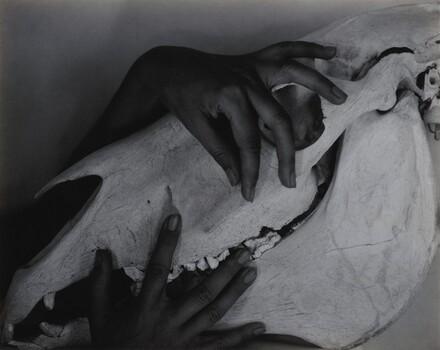 Georgia O'Keeffe—Hands and Horse Skull