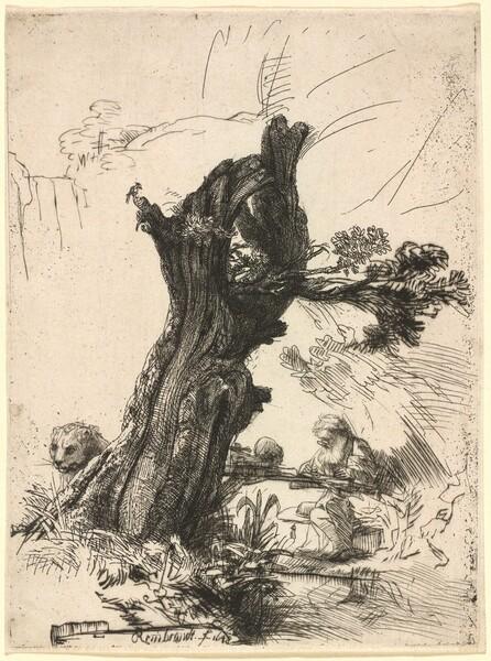 Saint Jerome beside a Pollard Willow