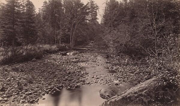 Marion River at Bassett