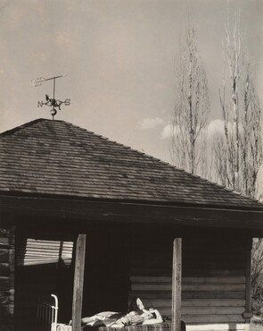 image: Back of Little House