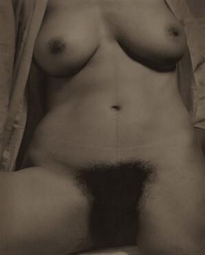 image: Georgia O'Keeffe—Torso