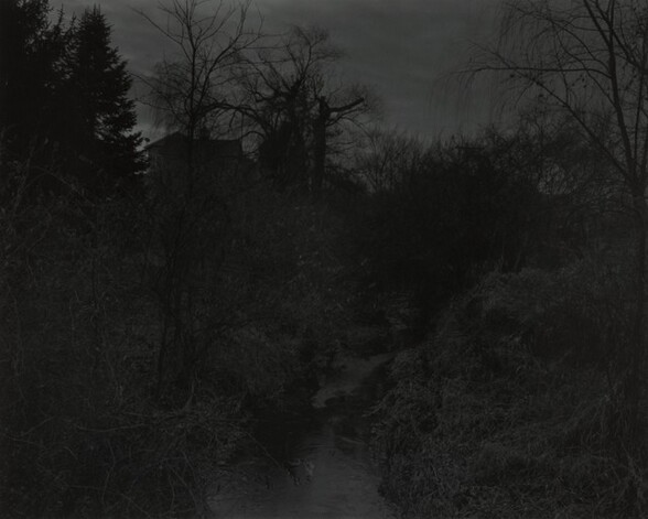 Untitled #18 (Creek and Trees)