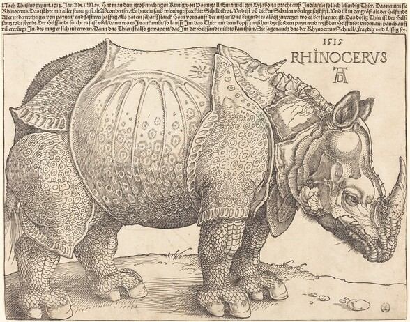 """Created with black lines against cream-white paper, a rhinoceros facing our right in profile fills this horizontal woodcut print. Near the upper right, in the corner above the conical horn growing from the animal's nose, the print is inscribed, """"1515 RHINOCERVS."""" Below, the artist's initials appear as a monogram, with the upper case D within the legs of the A. Five rows of tightly spaced German writing runs across the top edge of the paper, above the single-line border framing the animal. The rhinoceros's horn touches the border to the right and its hindquarters the left. Its left foot, farther from us, stands slightly ahead of its right hoof. Its front feet are close together and its head is lowered. Chunky, armor-like plates covering its body are patterned in some areas, especially on its legs and belly, with rings and dots, creating a mottled effect. The skin on its legs is scaly like a fish or reptile. A short, twisted, unicorn-like horn grows from between its shoulders, and the animal's lower lip and the ear we see is fuzzy with short hairs."""