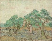 Three women stand on or next to a ladder picking olives in an orchard in this horizontal landscape painting. The women, trees, ground, and sky are all painted with long, parallel brushstrokes that curve and swirl over the canvas. The palette is dominated by sage and olive greens, tan and chocolate browns, spruce blue, and eggshell-white. The women are outlined with dark brown lines. All three wear long skirts and long-sleeved shirts, and all reach for olives on the trees or into baskets for the harvest. One woman, to our left, stands on the ladder and faces us; the second woman leans or sits against the right side of the ladder and faces away, her hair covered in a cloth; and the third woman stands at the foot of the ladder to our right, turning away from us. The tan and pale green of their clothing is echoed in trees around them. Short, distinct brushstrokes in pine and light green, with a few touches of silvery blue, create leaves on trees whose gnarled trunks are outlined with dark brown. The horizon line comes about a third of the way up the composition and the sky above is painted with distinct strokes of ivory, pale mint green, and a few touches of shell pink. The ground around the women and trees is painted with sage and celery greens, slate blue, and brown. The brushstrokes are spaced far enough apart in places that bare canvas is visible underneath, especially in the ground.