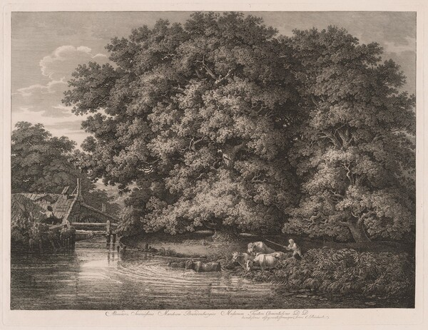 The Mill at the Great Oaks