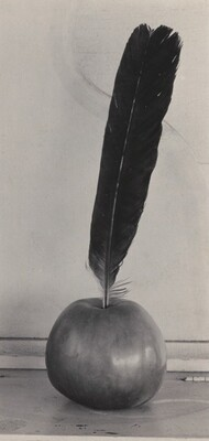 Crow's Feather and Apple