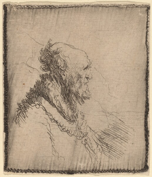 Bald Old Man with a Short Beard in Profile