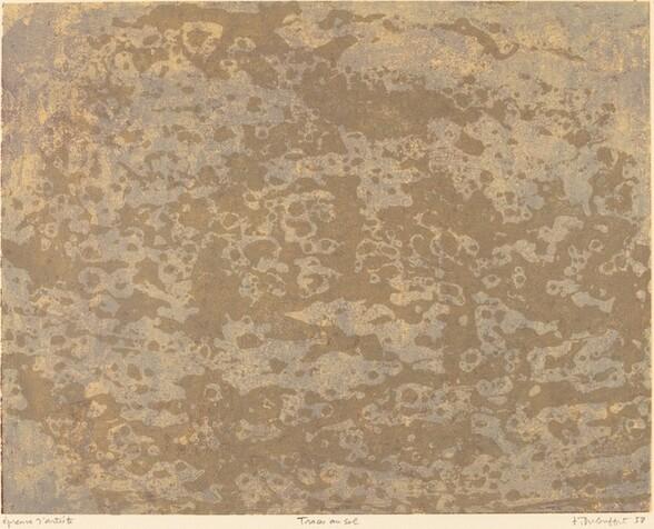 Traces au sol