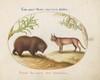 Plate 15: A Bear and a Lynx(?)