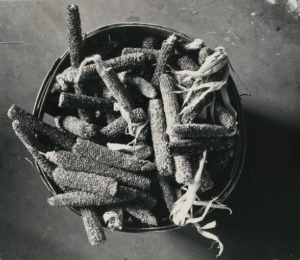 Basket of Cobs