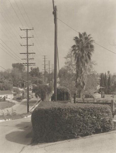Charnock Road/Inglewood Boulevard, Mar Vista (Venice)