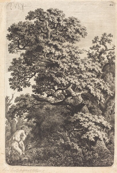 Satyr and Nymph in a Swamp
