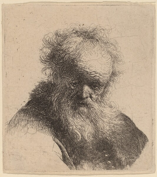 Bust of an Old Man with Flowing Beard and White Sleeve