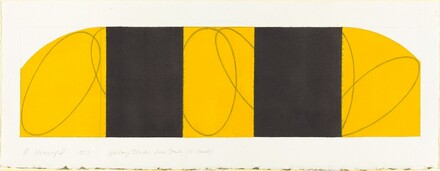 Yellow / Black Zone Study (5 panels)