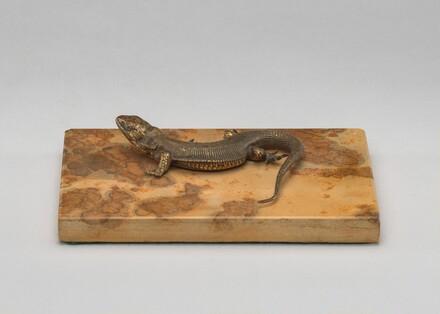 Life Cast of a Lizard
